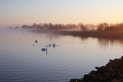 Morgennebel, Makkum, Holland