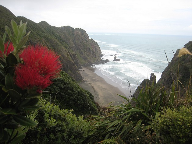 Mercer_Bay_on_Aucklands_west_coast_viewed_from_the_Hillary_Trail