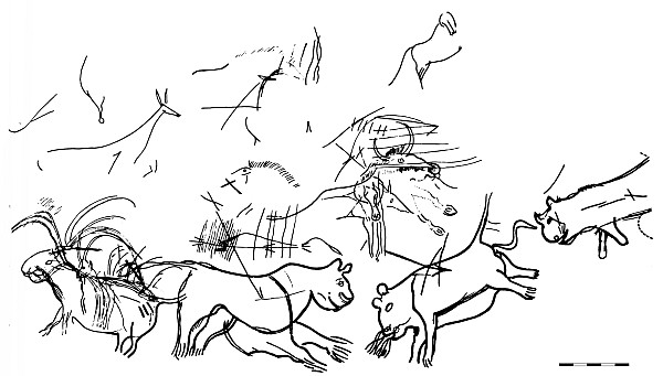 H hle von lascaux feierte 70 jahre seiner entdeckung - Coloriage grotte ...